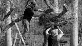 Jardiniers professionnels Tarn