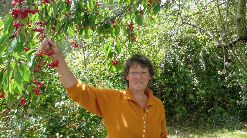 Sylvie Gravier paysagiste dans le Tarn, Tarn et Garonne, Aveyron