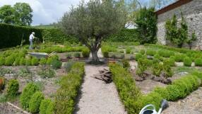 Entretien jardin tarn et garonne