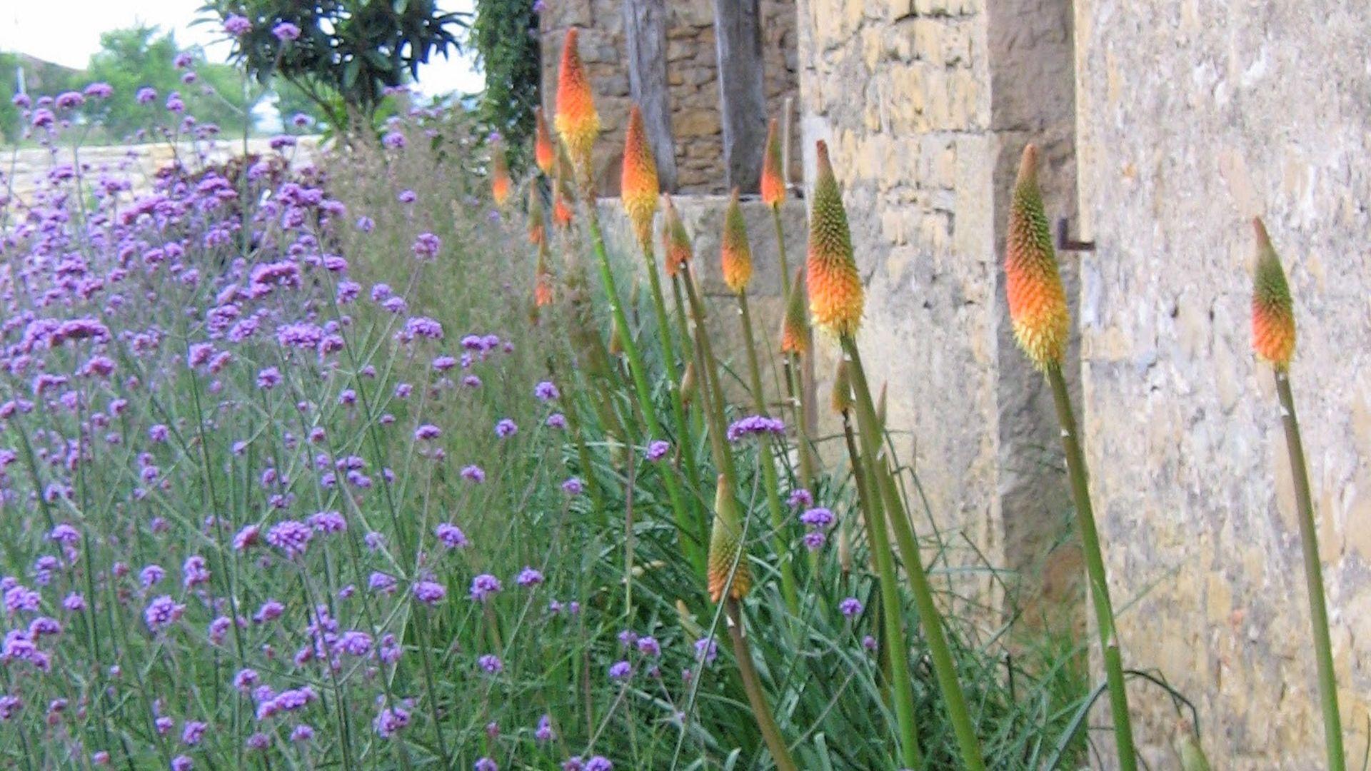 Jardins des bastides paysagiste p pini re et march aux for Jardin aux fleurs