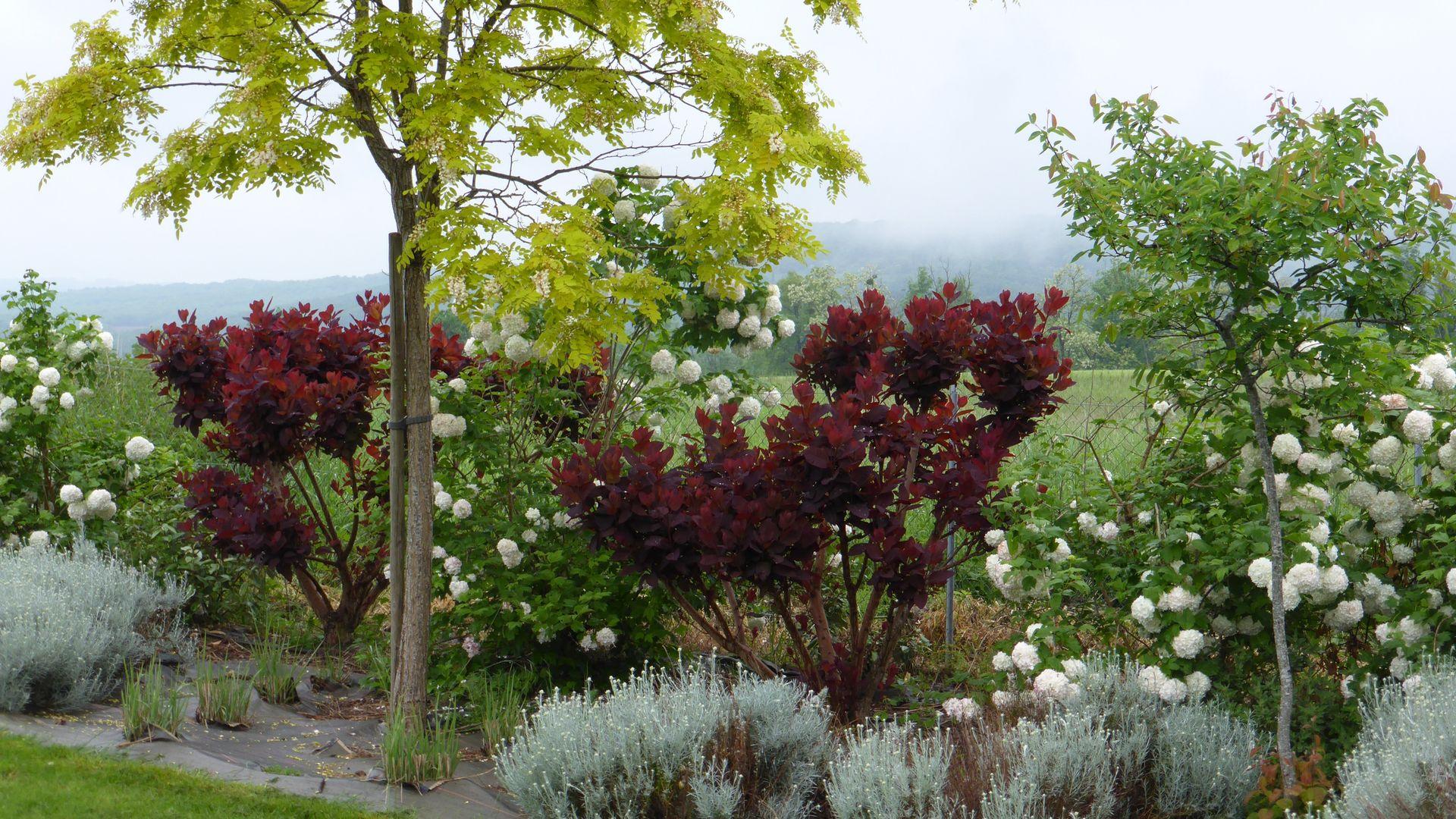 Entretien jardin tarn for Entretien jardin obligation